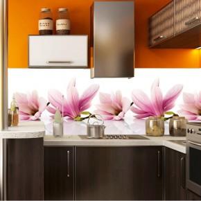 Fototapeta do kuchni magnolie