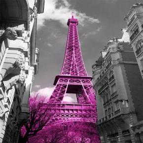 Fototapeta wieża Eiffla różowa