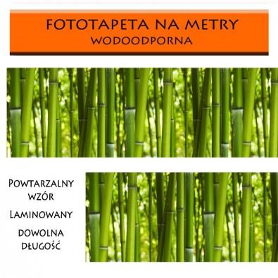 Fototapeta bambusowa wiosna