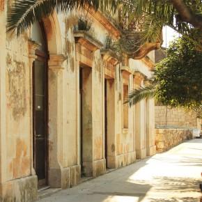 Fototapeta uliczka i palma