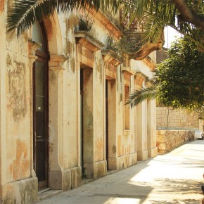 Fototapeta palma w uliczce