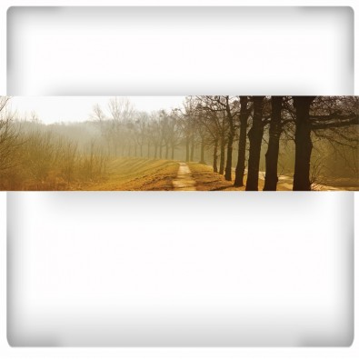 Fototapeta Aleja drzew - panoramiczna