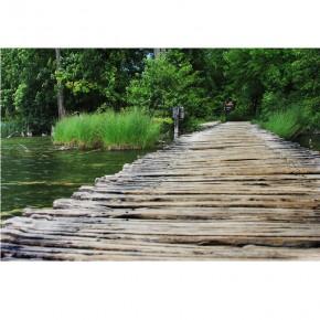 Drewniana kładka nad jeziorem z drzewami |