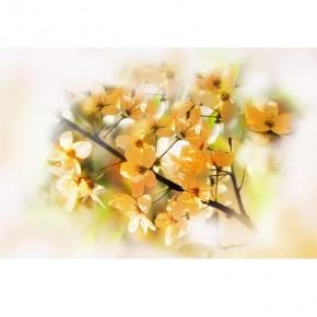 brzoskwiniowe kwiaty do sypialni