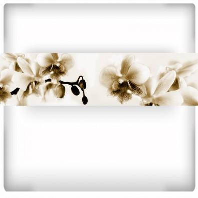 Fototapeta orchidea do kuchni