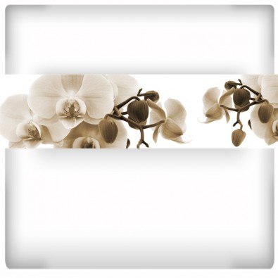 Fototapeta brązowa orchidea