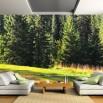 Fototapeta polana w lesie