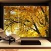 Dekoracja na drzwi szafy - Fototapeta złota jesień