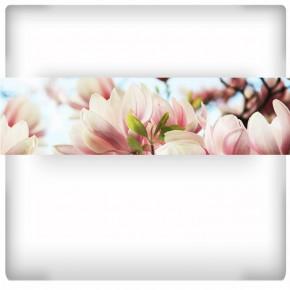 Fototapeta magnolie - panoramiczna