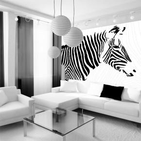 AS_Czarna zebra