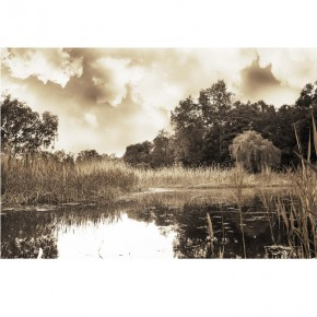 Fototapeta jezioro w sepii