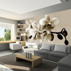 Fototapeta orchidea do sypialni