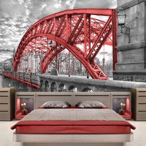 Fototapeta Zwierzyniecki most we Wrocławiu