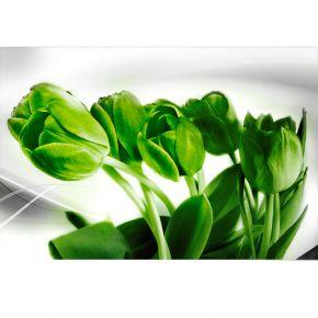 zielone tulipany