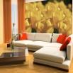 Fototapeta pole żółtych tulipanów